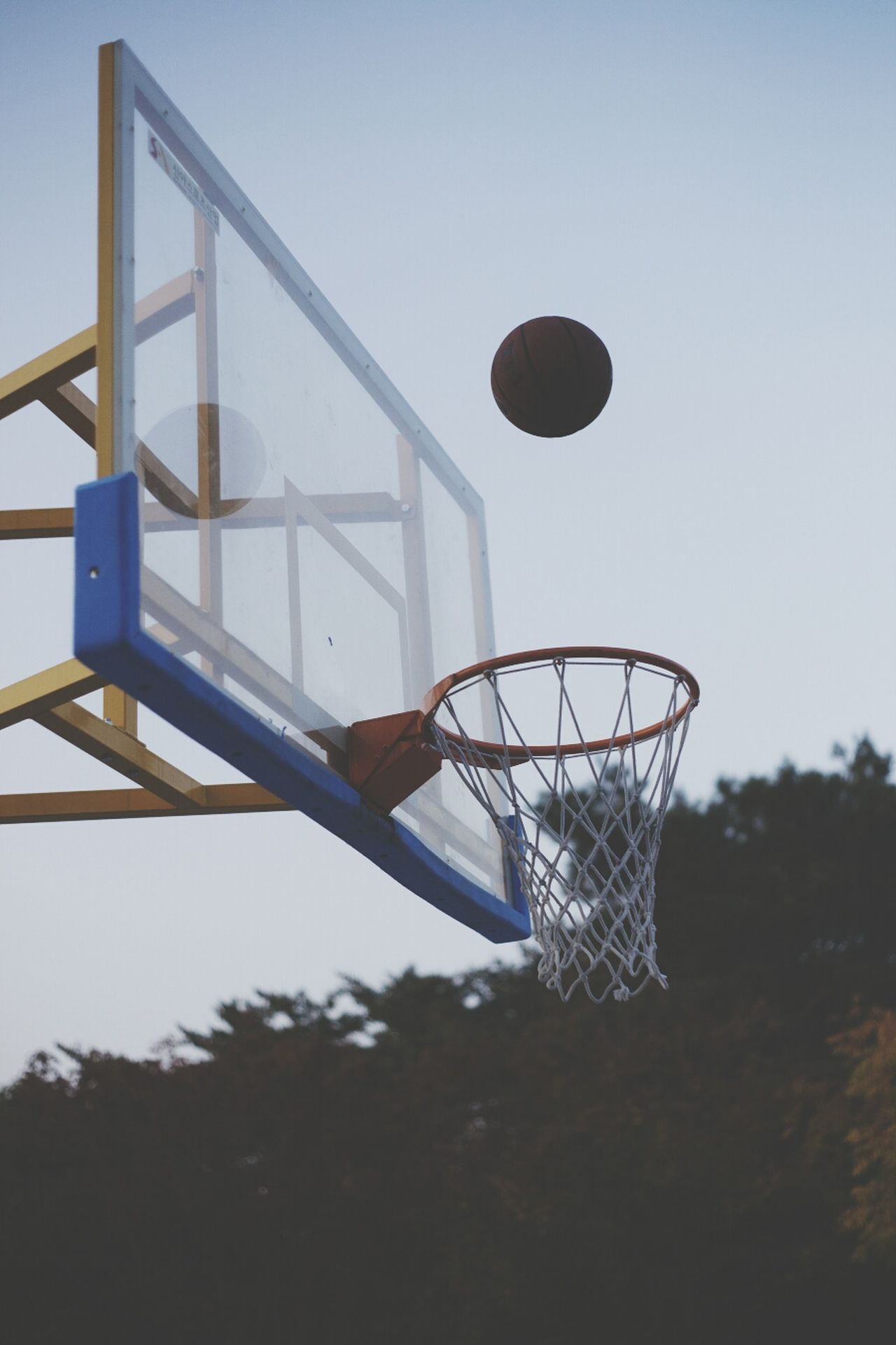 Beautiful stock photos of transparent, Basketball, Basketball - Ball, Basketball - Sport, Basketball Hoop