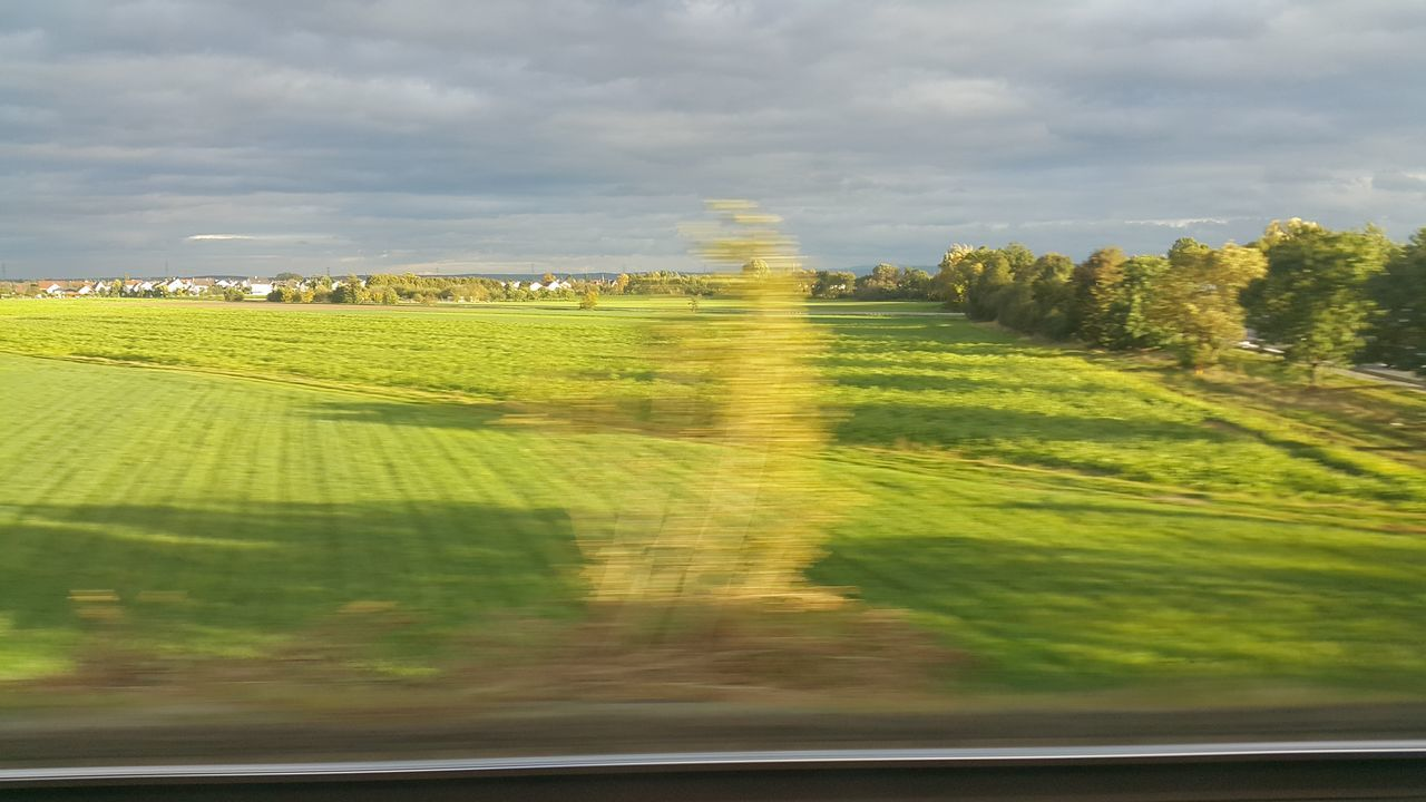 Morning Light Morning Sun On The Train Nature Agriculture Sunlight Tree Horizontal Beauty In Nature Scenics Green Color Grass Rural Scene Outdoors Landscape Day Sky Lush - Description Capturing Motion Capture The Moment Capturing Movement Speed Train Train Ride On My Way To Work