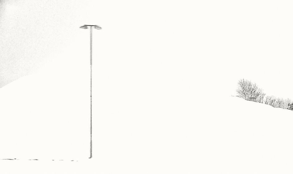 Nature Abondened Places Background White White Color White Background White Collection White Nature Snow Light Lighting Equipment Lamps And Lights. Lamp Nature Nature Photography Minimalist Photography  Simple Photography Simple Nature Minimal Nature No People