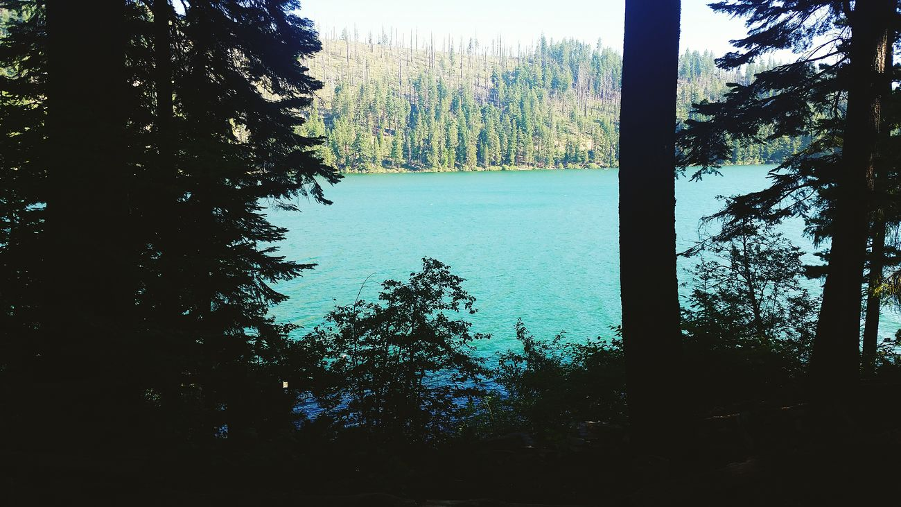 Campsite With A View Suttle Lake Oregon Lakeshore Camping