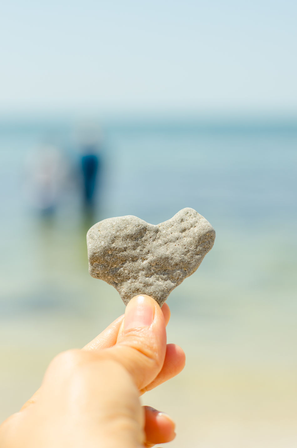 Beautiful stock photos of herz, Beach, Cropped, Day, Focus On Foreground