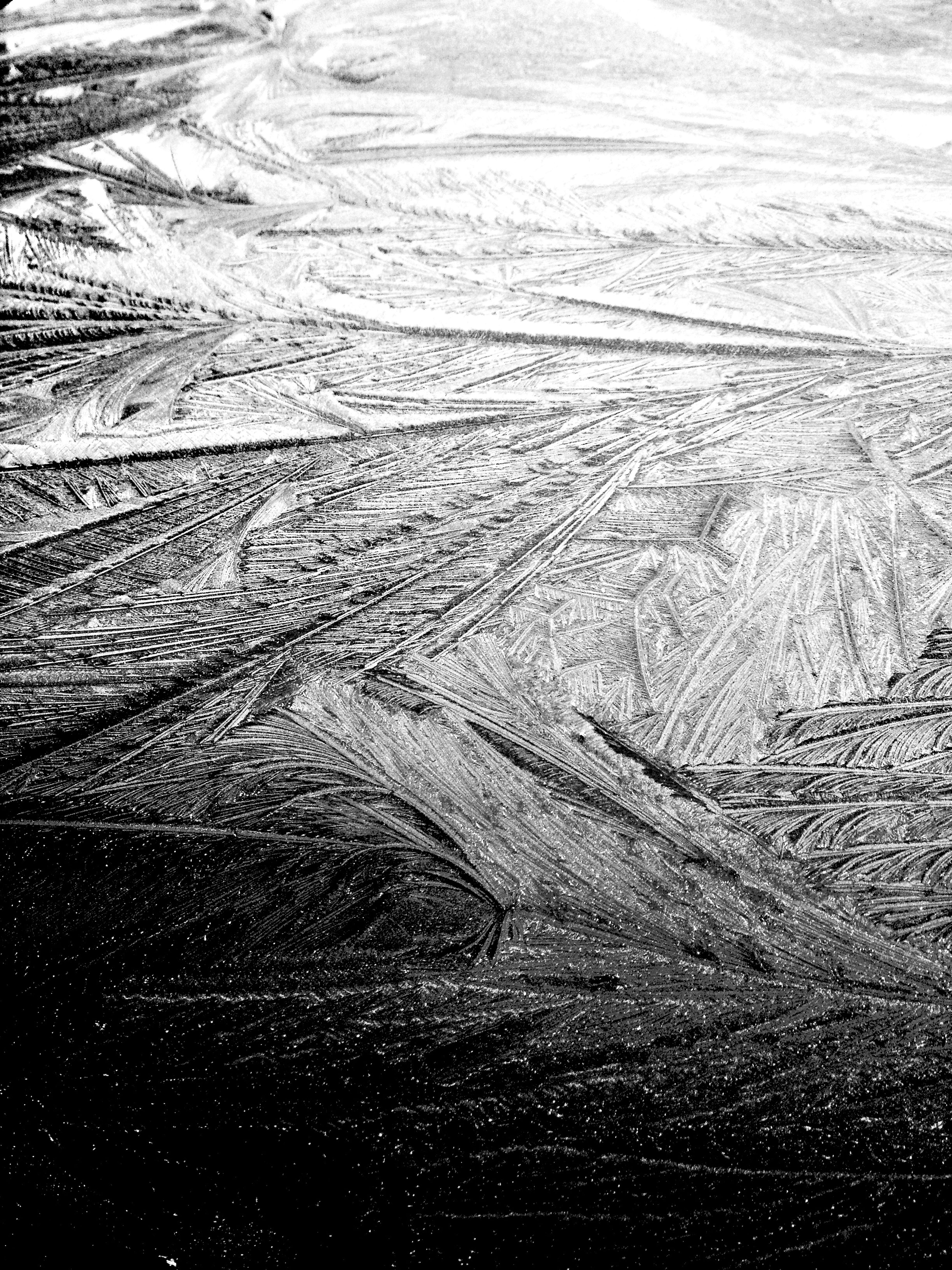 Frost Ice Creations Winter Black And White B&w Blackandwhite Shades Of Grey