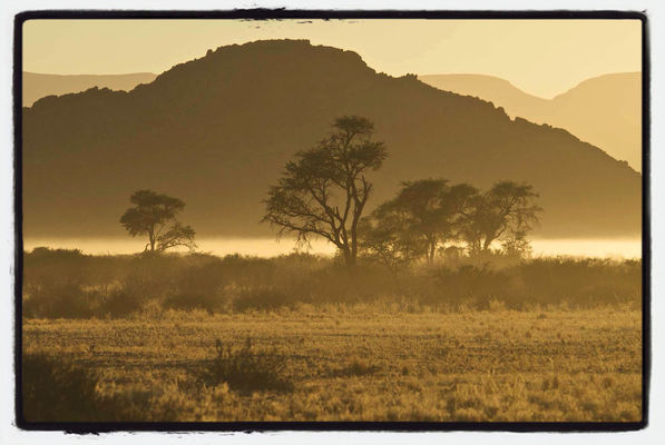 Nature at Namibia by mo.