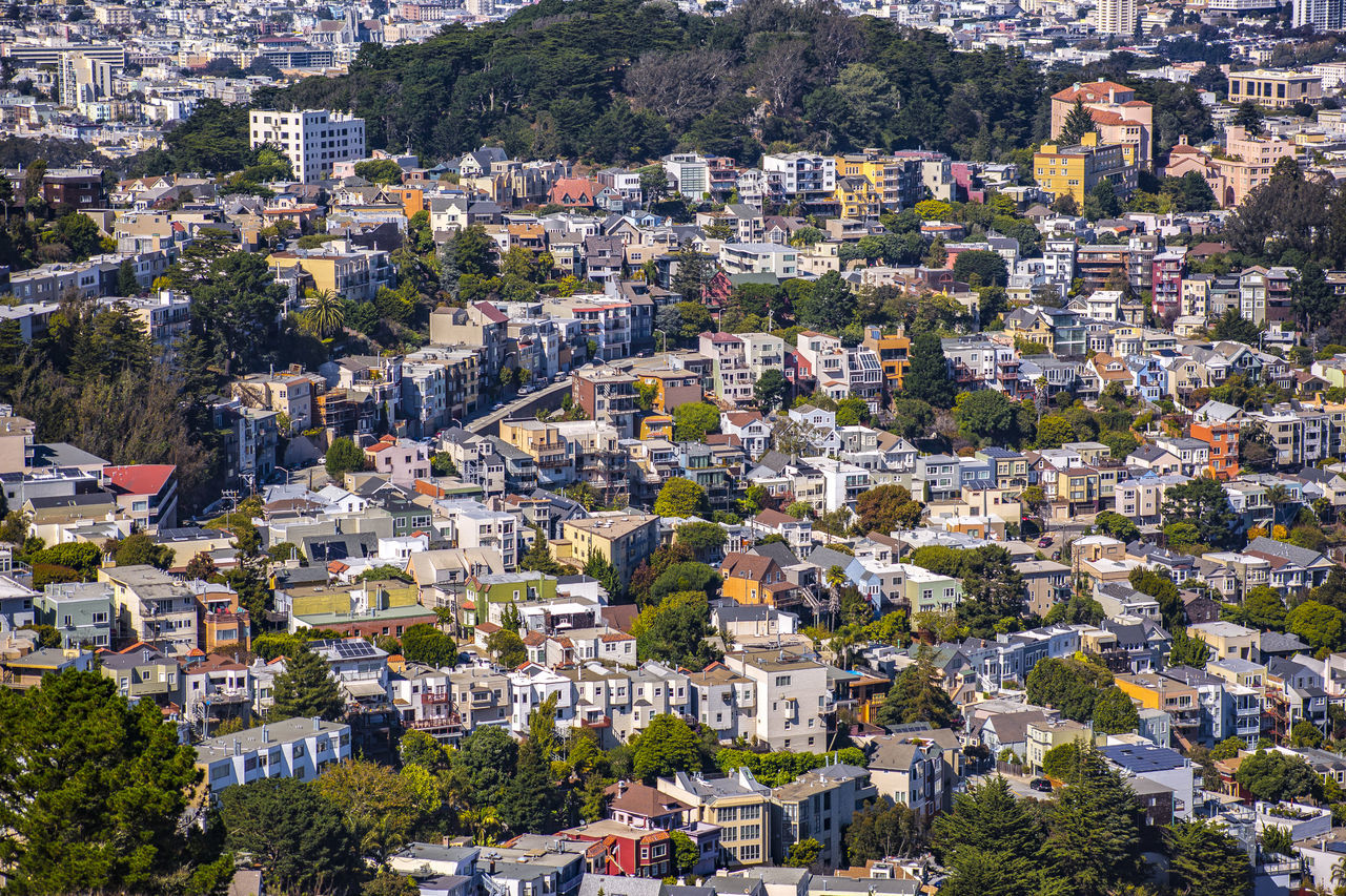 Architecture Building Exterior Built Structure Californa City Cityscape Close Community Day High Angle View Homes House Houses Nature No People Outdoors Residencial Residential Building Roof San Francisco San Francisco Bay Scenics Sky Town Tree