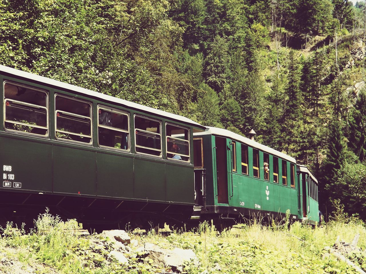 Train Old Train Transportation Train - Vehicle Rail Transportation Trainwagon Train Wagon Train In The Forest Train In The Mountains