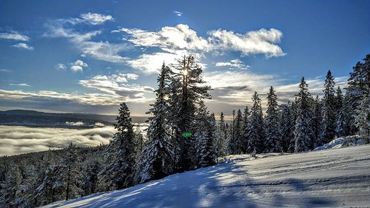 💙❄💙haPPy suNdaY❄💙❄ Kongsberg Kongsbergskisenter Buskerud Bns_norway Wu_norway Highlightsnorway Dreamchasersnorway Damgooddays Igscandinavia Loves_norway Mittnorge Loves_nature Loves_scandinavia Earlymorning  ILoveMornings Officeview ILoveMyJob Iloveskiing Ig_neverstopexploring Magicforest Mylifemyadventure Thebestofnorway Keeponsmiling Lifeisgood Goodmorning skyporn skylovers ic_skies