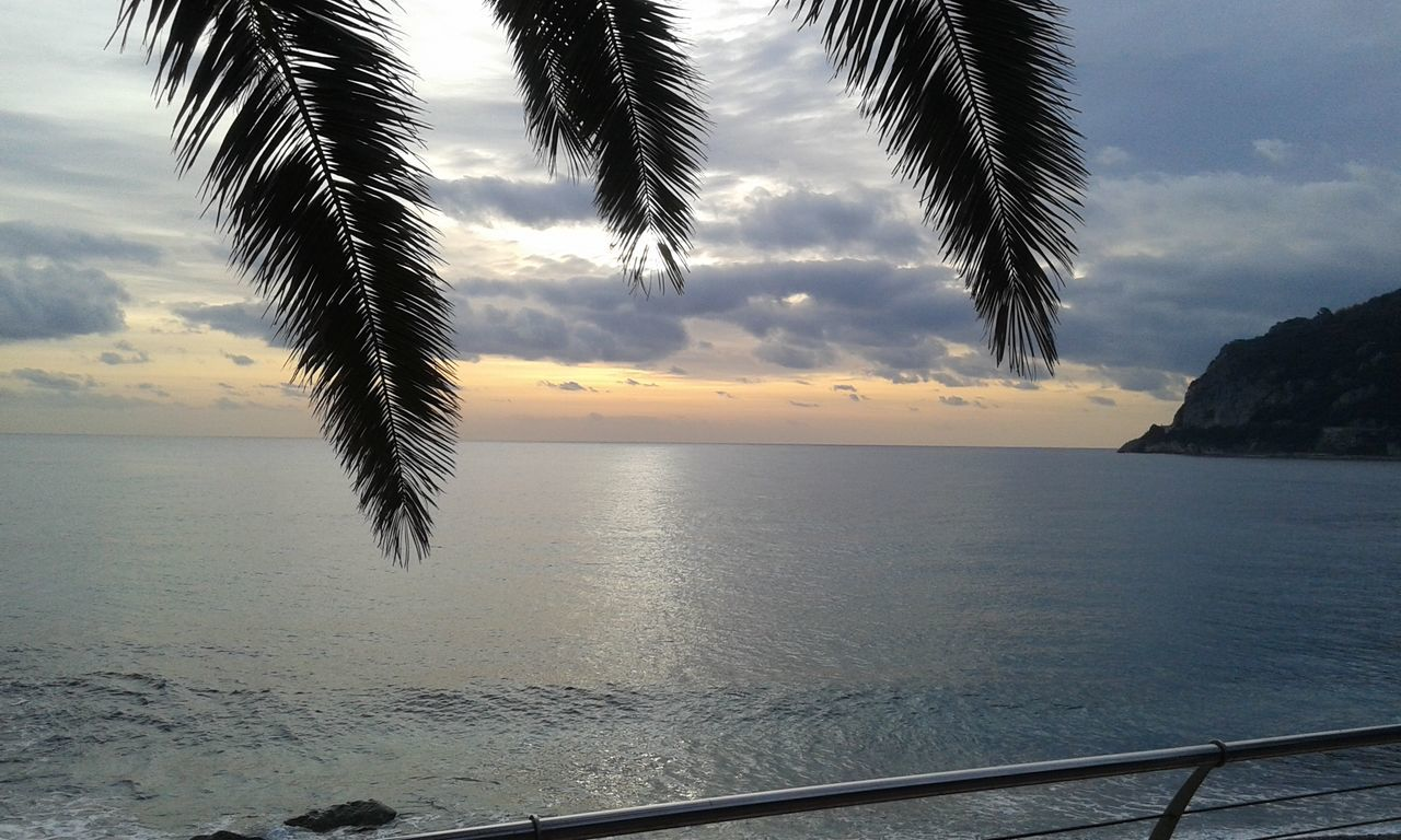 sea, scenics, nature, sky, beauty in nature, tranquil scene, tranquility, water, palm tree, no people, sunset, cloud - sky, idyllic, tree, horizon over water, outdoors, day