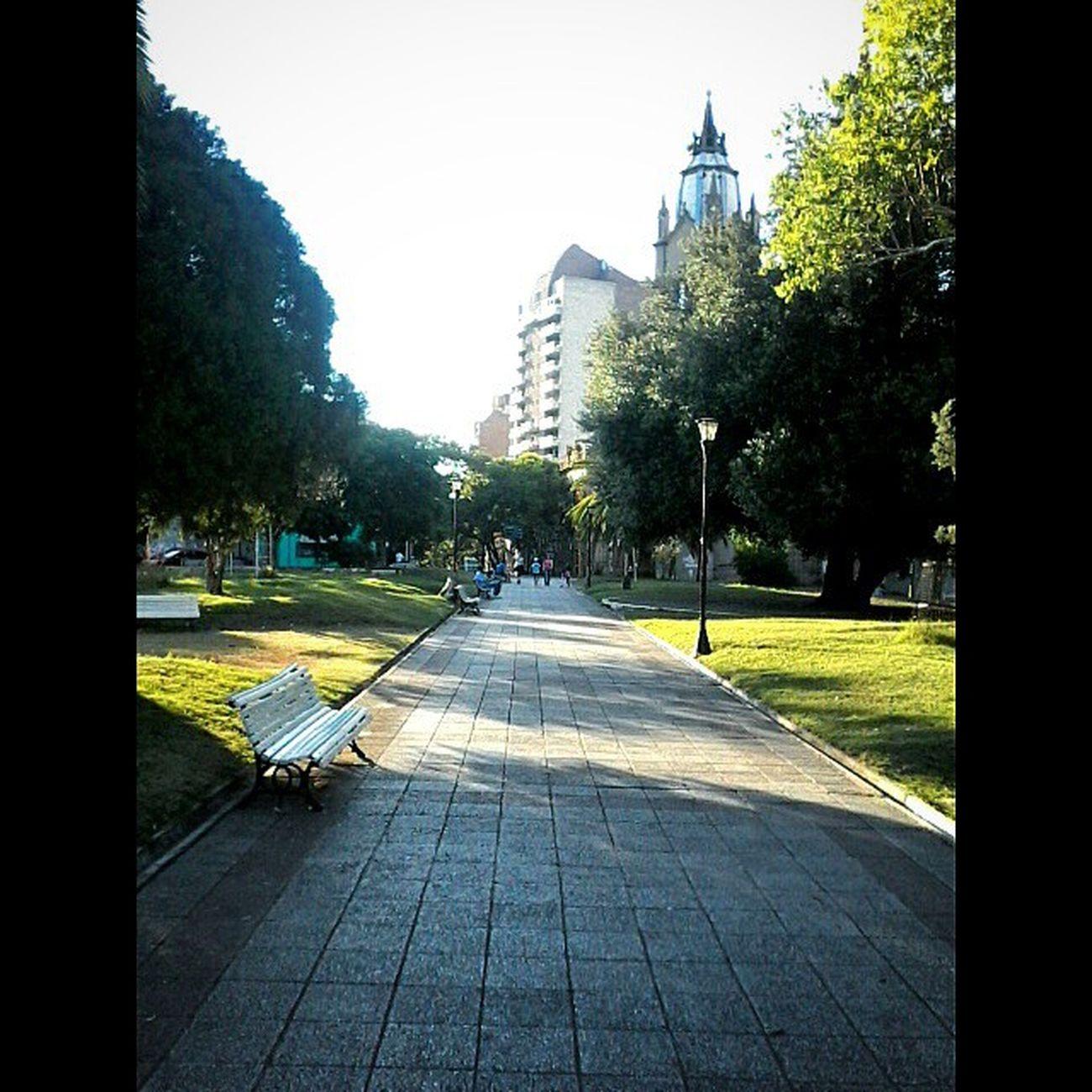 Linda tarde en la plaza Alvear. Linda Tarde  Plaza Paraná alvear otoño