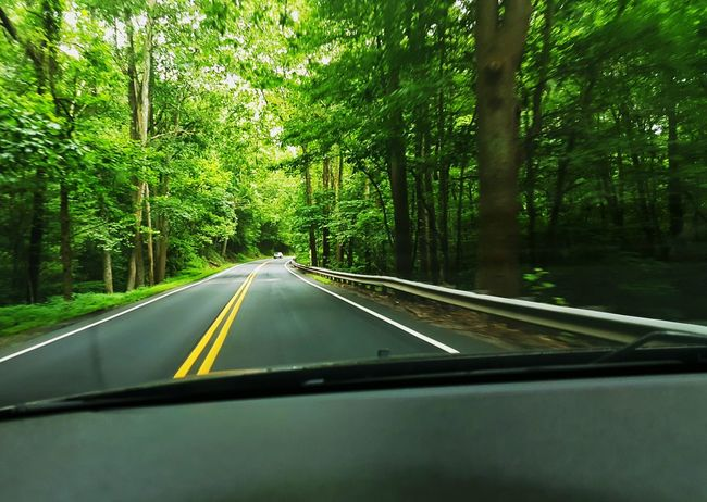 Driving through the Shenandoah Mountains
