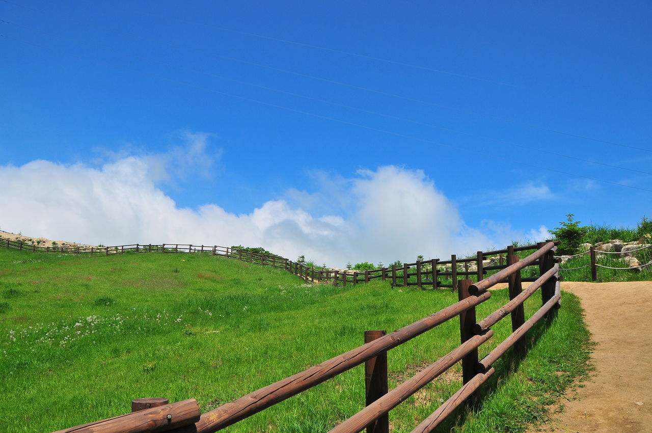 Beauty In Nature Cloud Cloud - Sky Cloud And Sky Cloud_collection  Clouds And Sky Cloudscape Grass Grassland Landscape Nature Pasture Pasture Fence Pasture Land Pasture, Paddock, Grassland, Pastureland PastureLand Scenics Sky