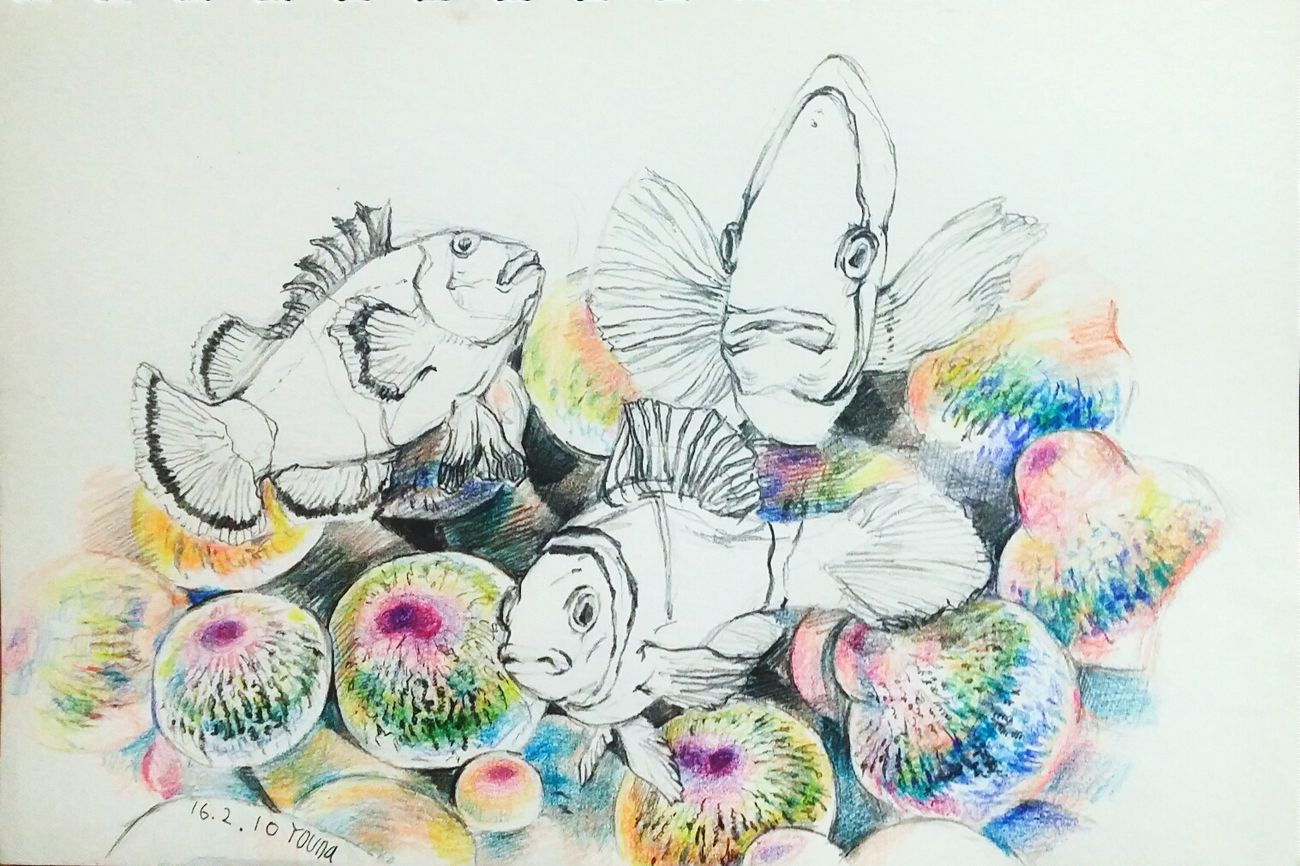 2016.02.10 Daily Drawing Doodle Nimo Fish Under The Sea