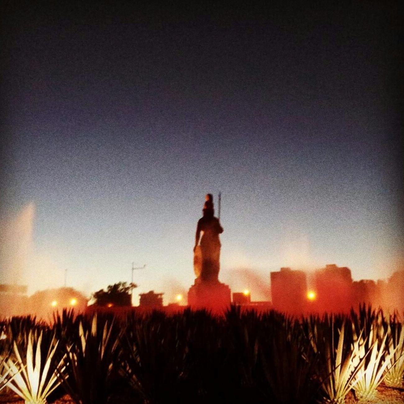 Glorieta Minerva Minerva Urbanphotography Urban Landscape Walking Around Color EyeEm Light And Shadow Guadalajara Glitch