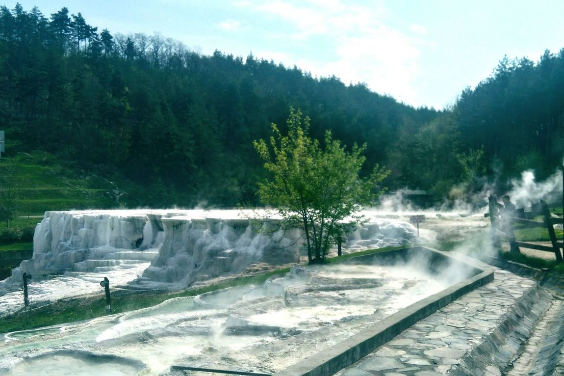 Water No People Fog Nature Beauty In Nature Hot Spring Spring 2017 Freshness Forest Salt Bath Hungary Landscape Nature
