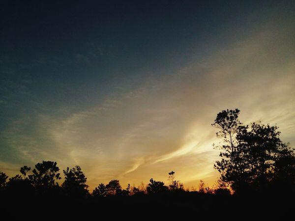 The color of the twilight sky. Twilight Sunset Silhouettes Sunset Beautiful Sunset Sunset Sky EyeEm Malaysia ProtonCity Tasikprotoncity Skyporn Sky And Trees