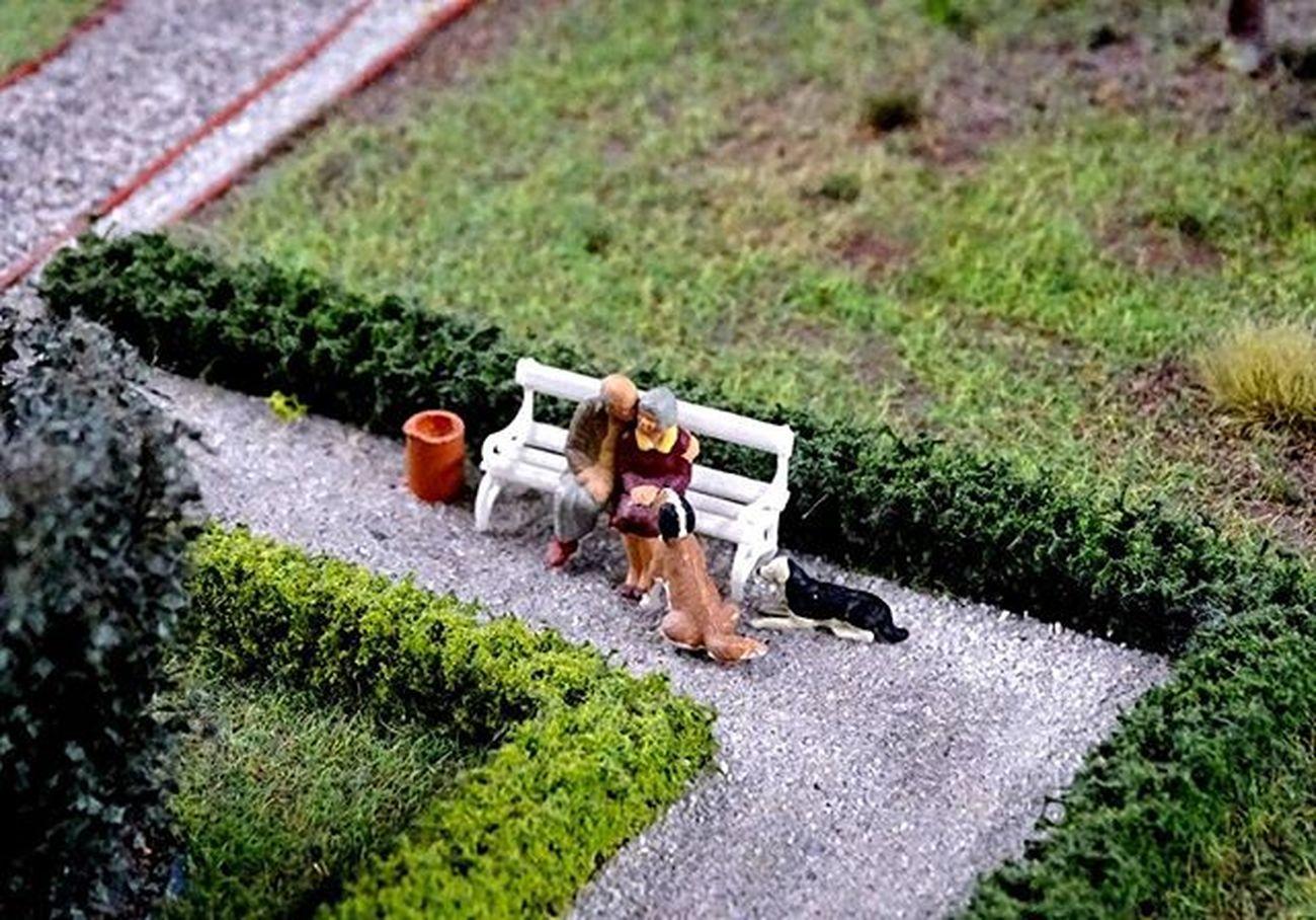 Inlove Twosome Miniaturwunderland Miniatur Wunderland  Wonderland Hamburg Germany Dogs Backtotheroots Oldisgold Oldlove