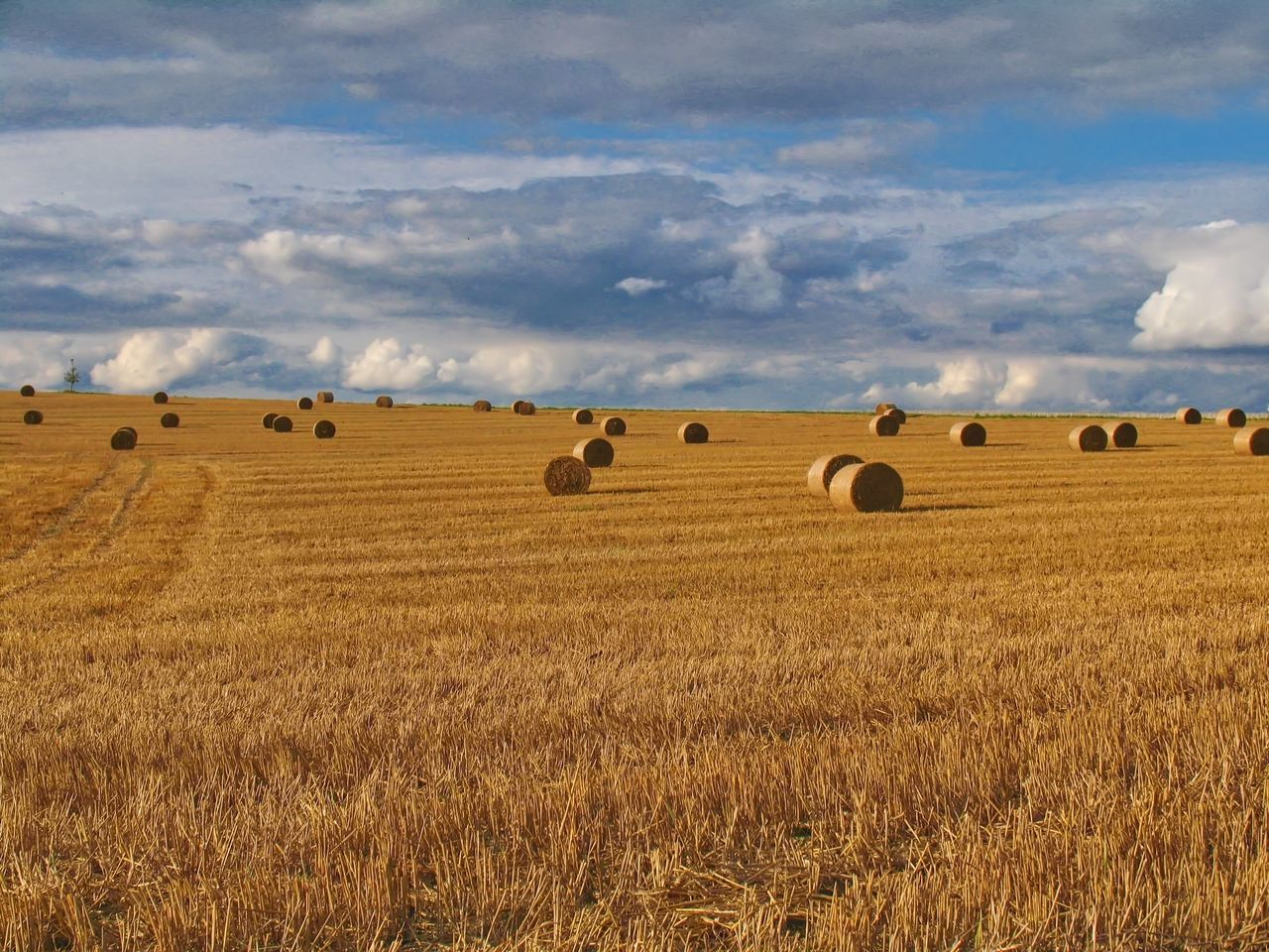 Agriculture Bale  Beauty In Nature Cloud - Sky Hay Hay Bale Landscape Nature No People Outdoors Sky Tranquility