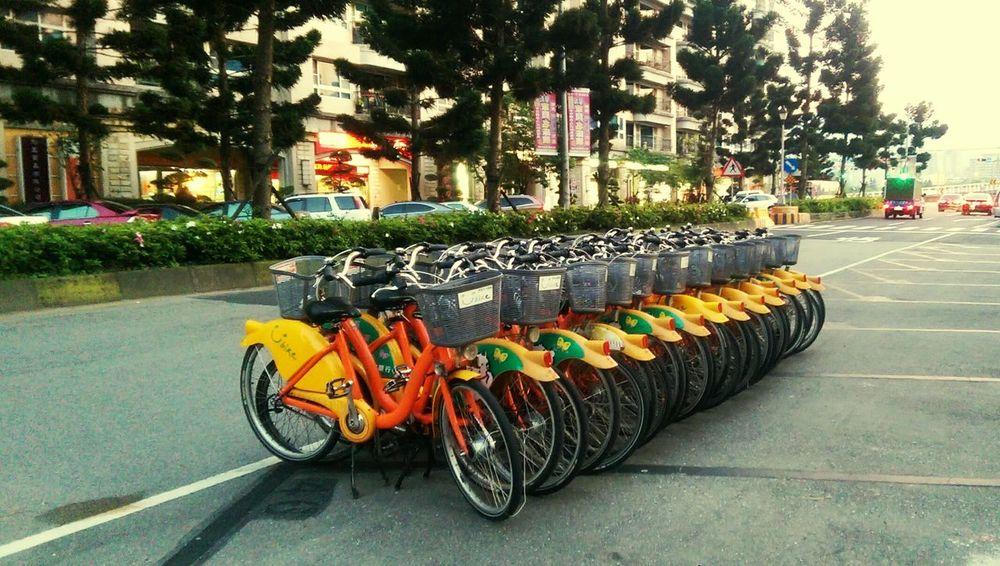 BikeNight Bikepark U Bike