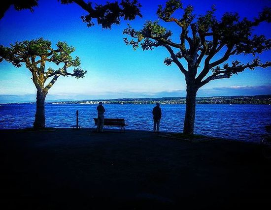 Contemplation Sea Ocean Sky Skyporn Magnificent Photography Photooftheday Instaphoto Instadaily Instamood Travel Germany Constance Lifestyle Landscape Nature Beautiful Amazing Shadow Colours Wanderlust Trees Man World Thought escape view horizon konstanz