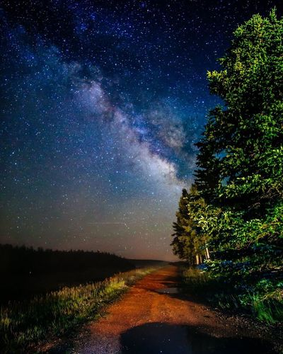 Grand Canyon Milky Way Star - Space Astronomy Space Night Tree Sky Galaxy Nature Constellation Beauty In Nature No People Outdoors Astrophotography Astro