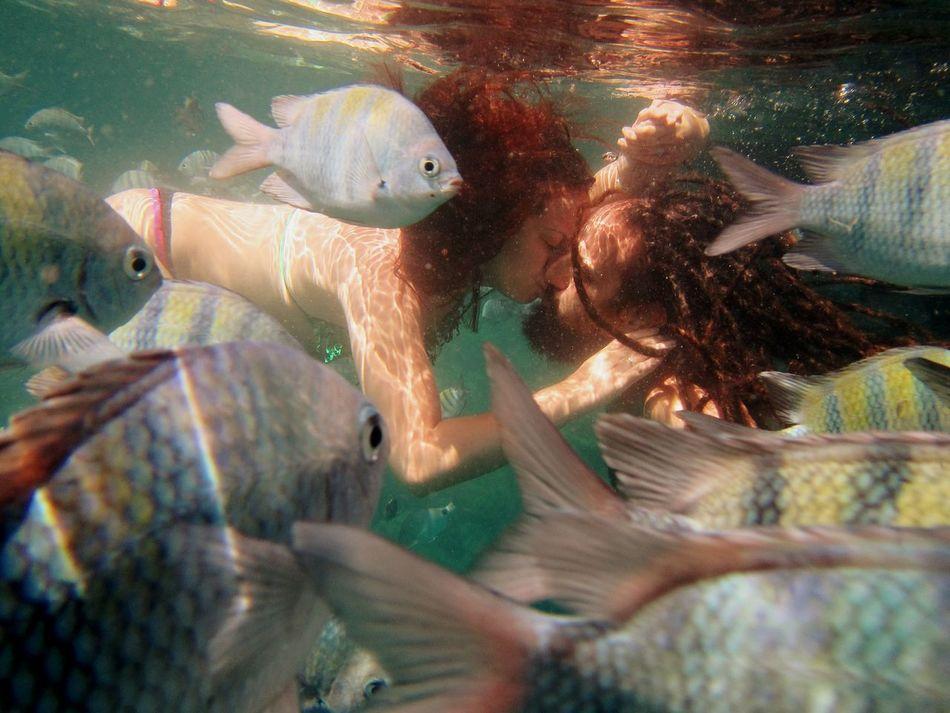 Peces Rastasmgph Besobajoelagua Brasil Riodejaneiro IslaGrande AngraDosReis Paisaje Mar Paraíso
