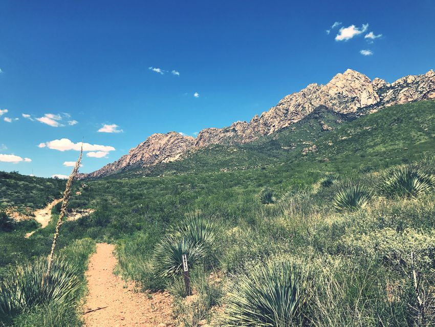 Mountain Nature Tranquility Beauty In Nature Tranquil Scene Day Blue Outdoors Scenics Sky Landscape No People Plant Las Cruces