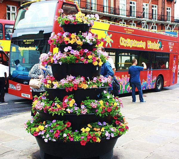 Tourists Tour Bus Colorful Bus Red Tour Bus Flower Tower Colorful Flowers English Flowers Tourist Destination Windsor Castle Windsor Tours Colour Of Life Your Ticket To Europe