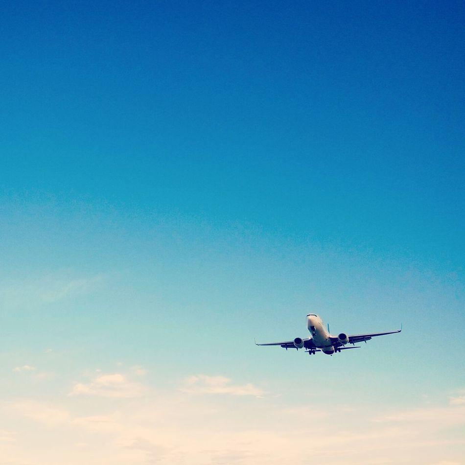 Airport Plane Landing Plane Blue Sky Garuda Indonesia