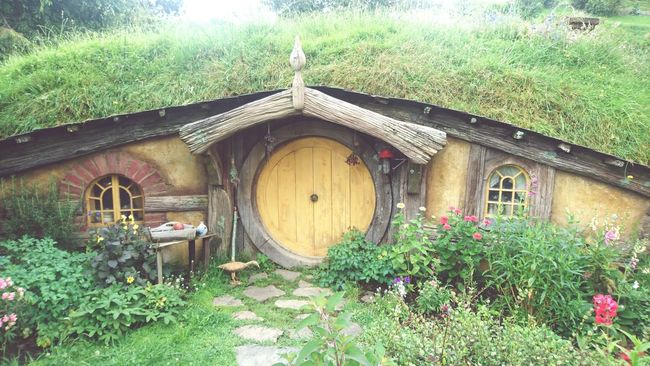 Hobbiton. Newzealand Adventure Travel Lordoftherings TheHobbit First Eyeem Photo