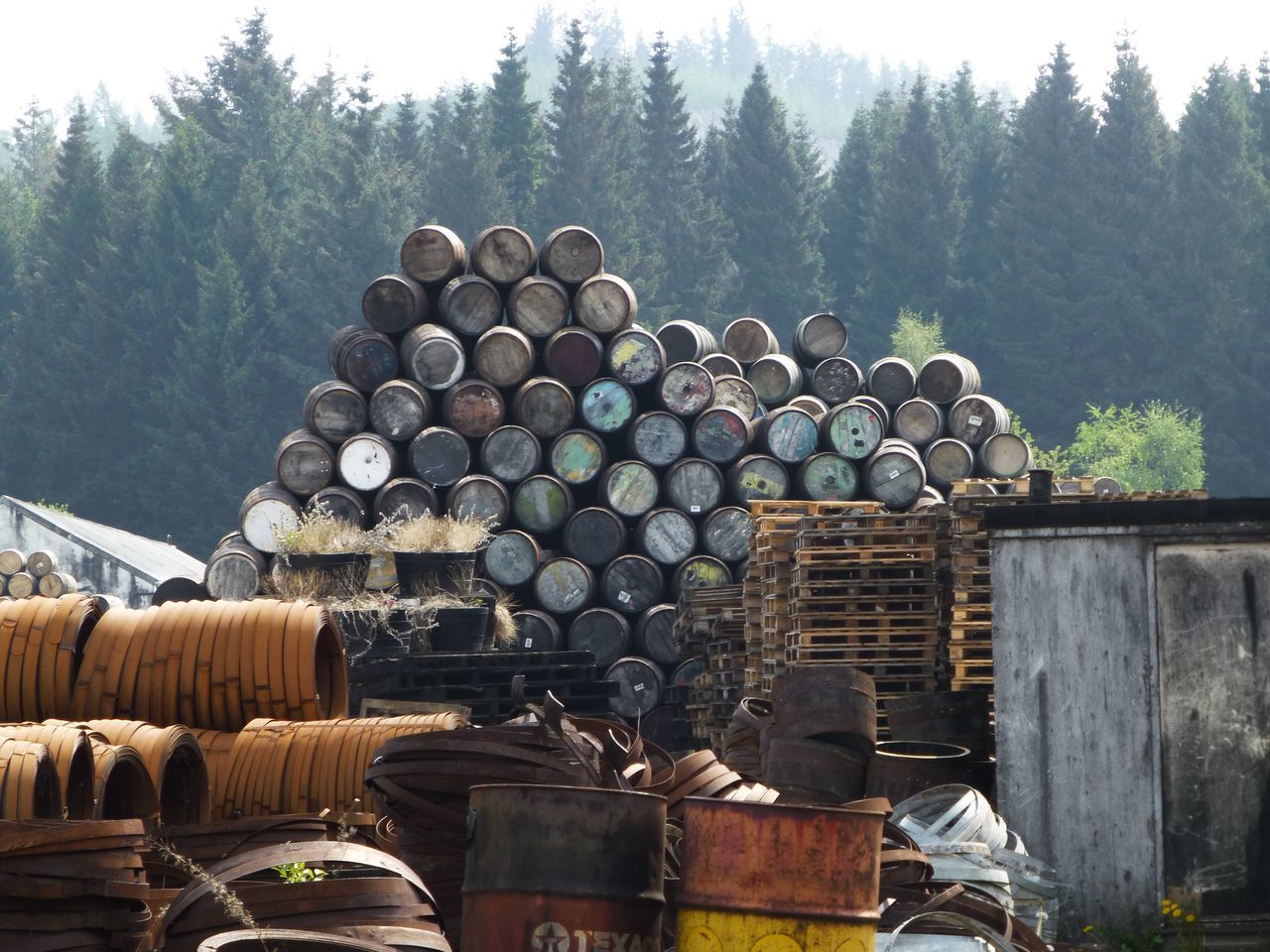 Whisky Barel Large Group Of Objects Day Tree Metal Stack No People Outdoors Mountain Nature