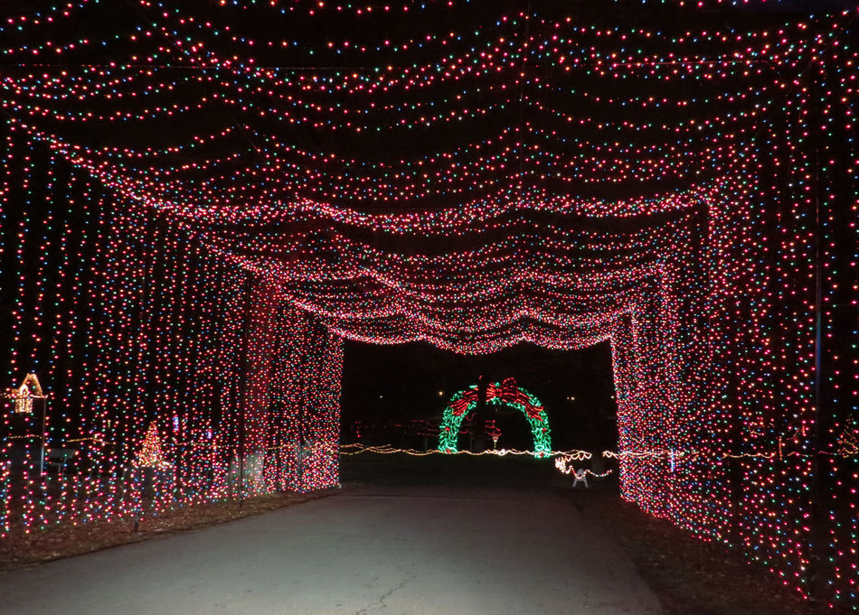 Christmas Decorations in Our Park Abstract Art Art And Craft Arts Culture And Entertainment Backgrounds Christmas In The USA Creativity Culture Cultures Decoration Design Full Frame Glowing Human Representation Illuminated Merry Christmas Merry Christmas! Multi Colored Night Ornate Pattern