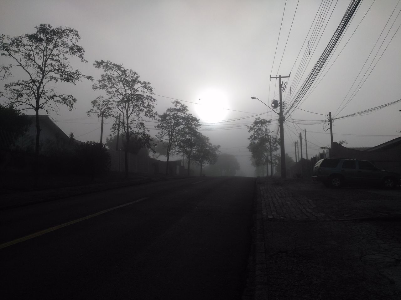 Fog Tree No People Cable Outdoors Telephone Line Landscape Rural Scene Nature Sky Electricity Pylon Day Neblina