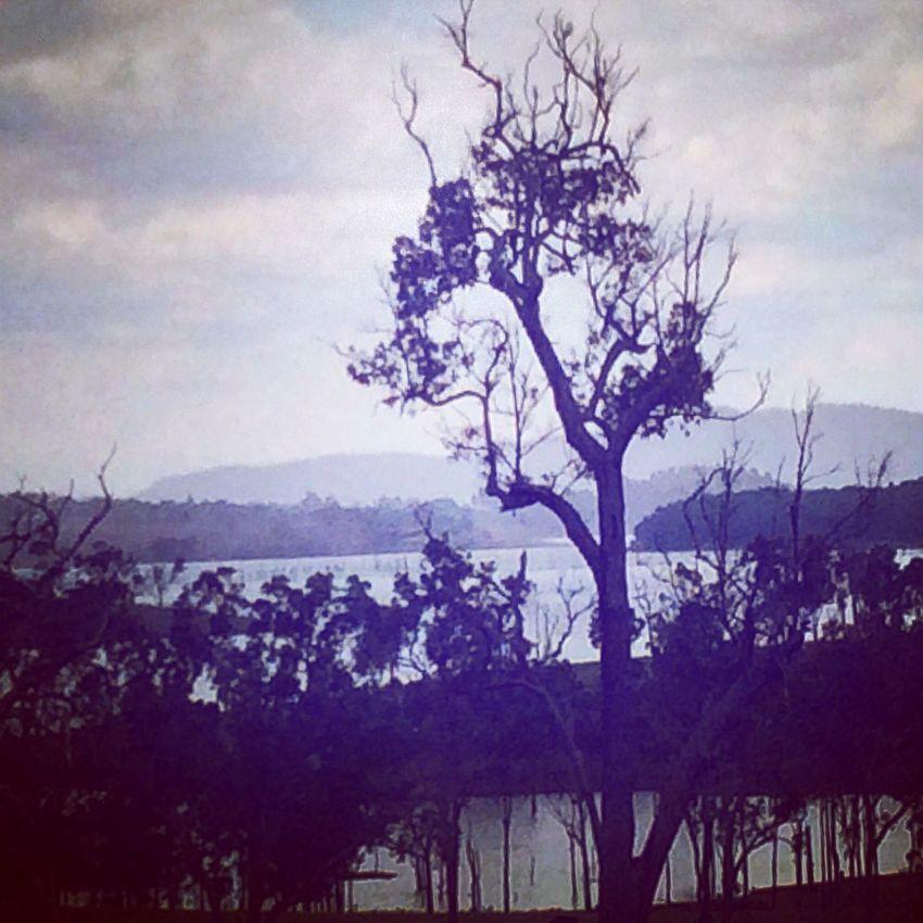 Stormy weather in Yungaburra,QLD