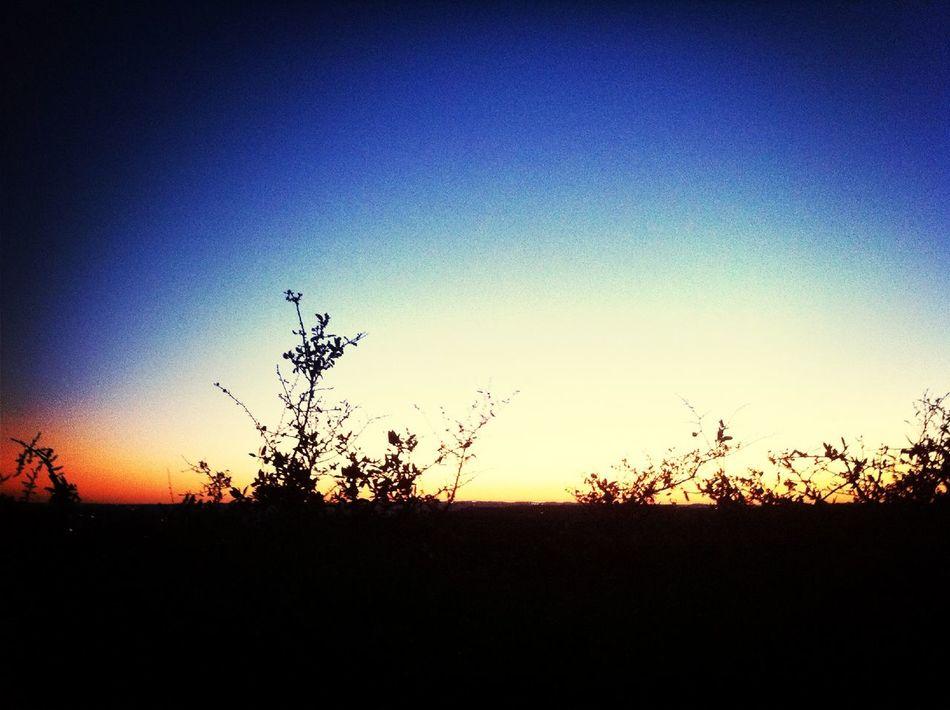sunset at Necropolis Of Britannia Manor Sunset