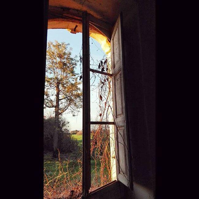 Италия заброшеннаявилла окно саленто Казарано Italia Salento Casarano Finestra Villaabbandonata Italy Instaitaly Window