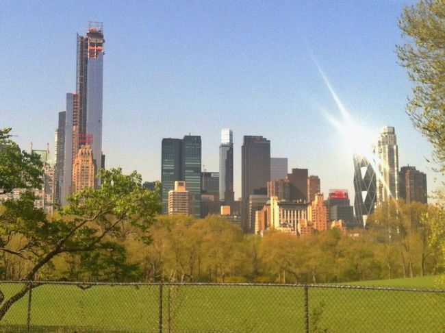Manhattan looked like the Emerald City this morning. Skyline Enjoying Life Time For A Race EyeEm Best Shots