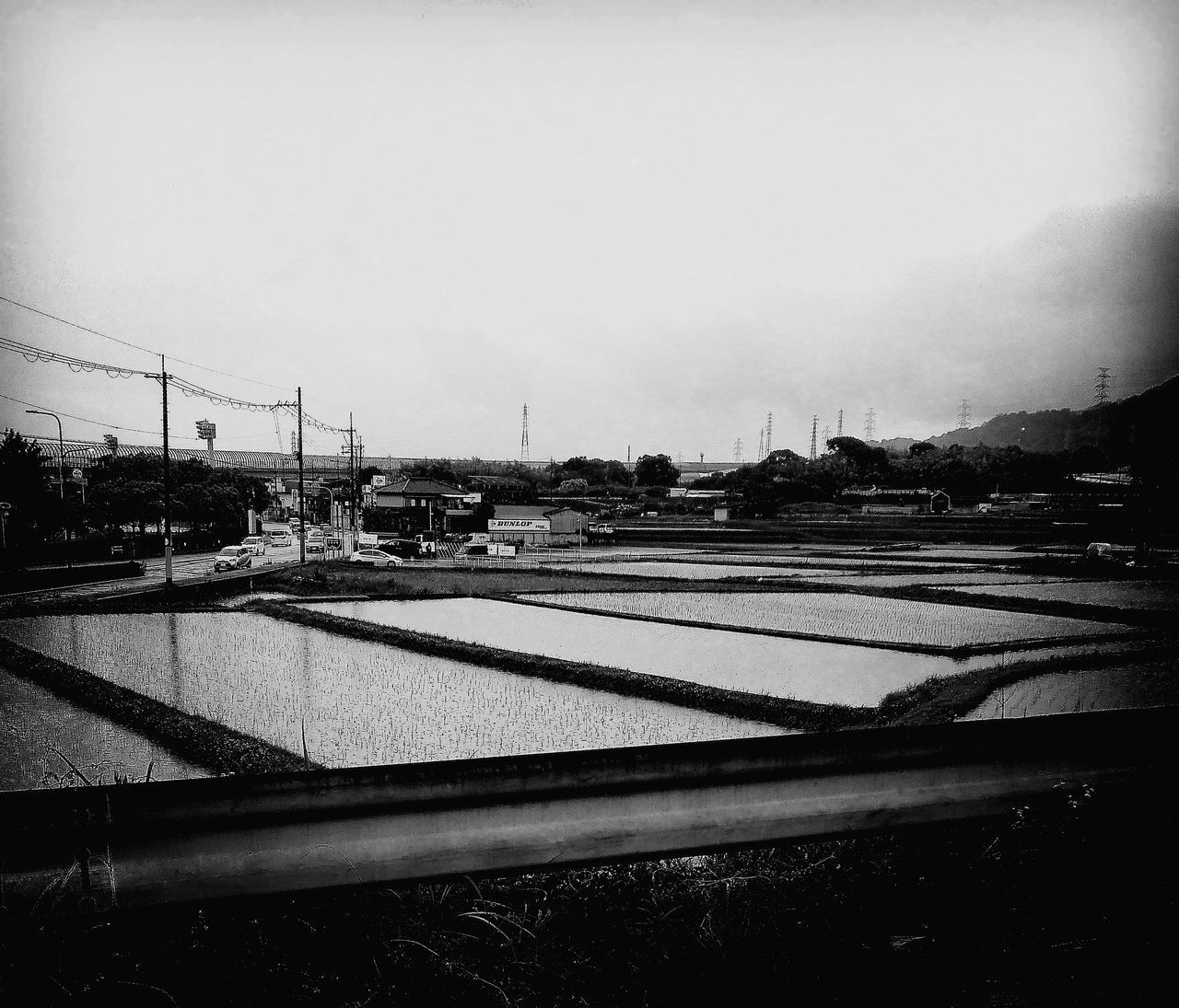 Japan Photography Rice Fields  Rice Fields And Water