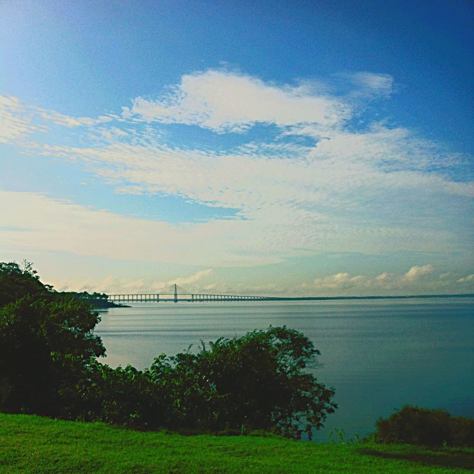 Manaus / from Ponta Negra Beach, Brazil Travel Enjoying Life Relaxing Natural Amazonriver Bridge Natural Beauty Rioamazonas