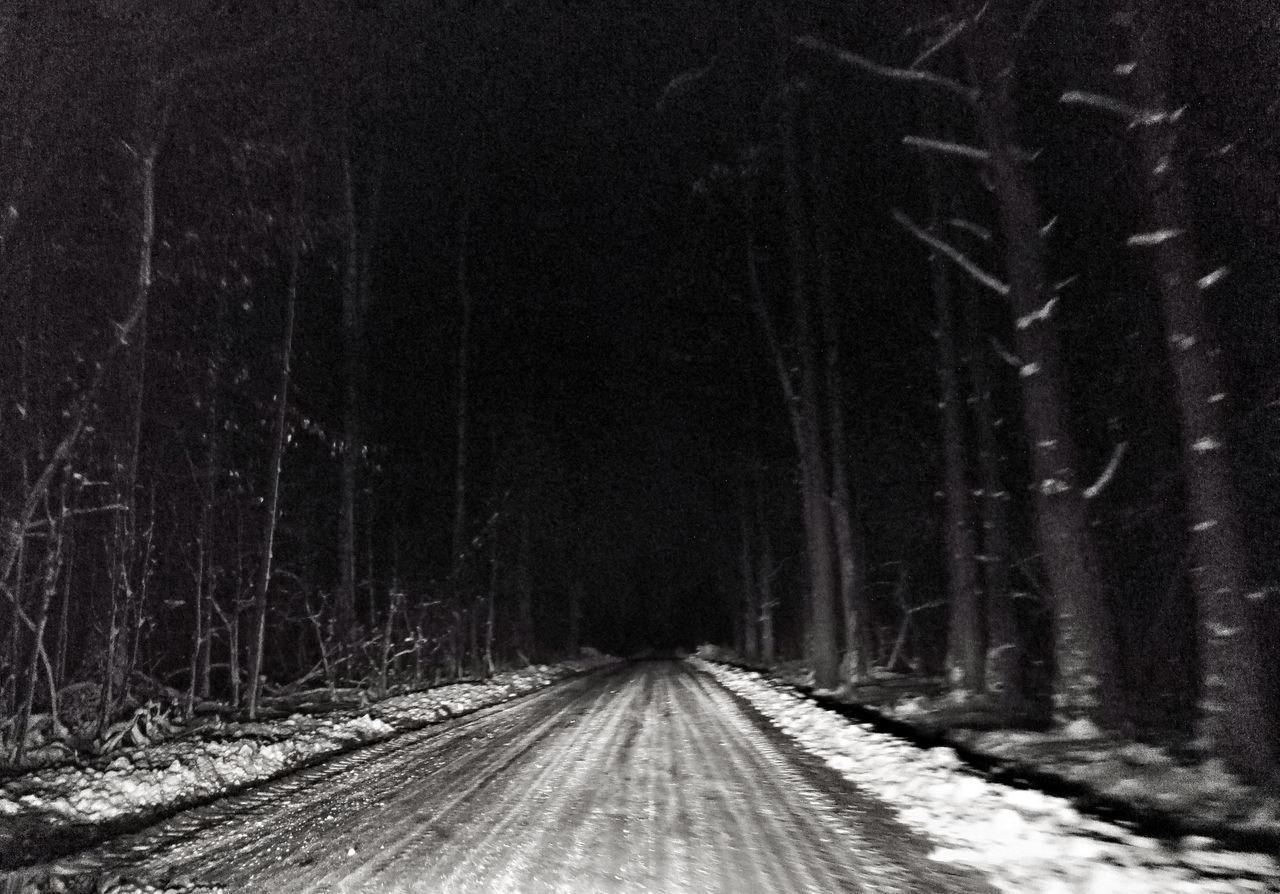 Snow Tree Cold Temperature Winter Nature The Way Forward Night Hello World Enjoying Life Black And White