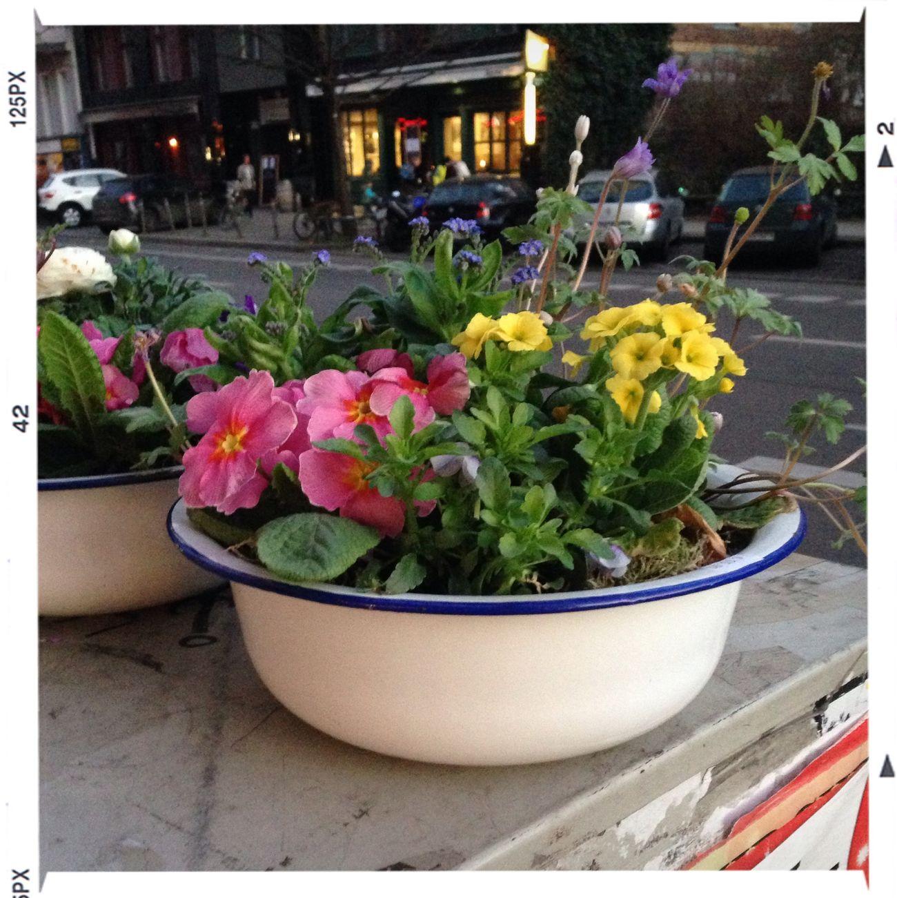 Frühlingsfarben an jeder Ecke! Quality Time