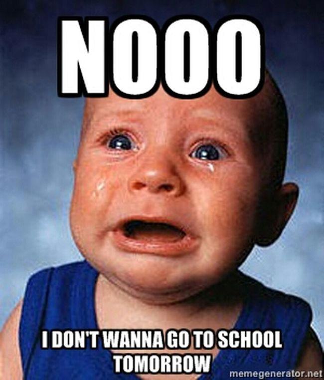 School <<<