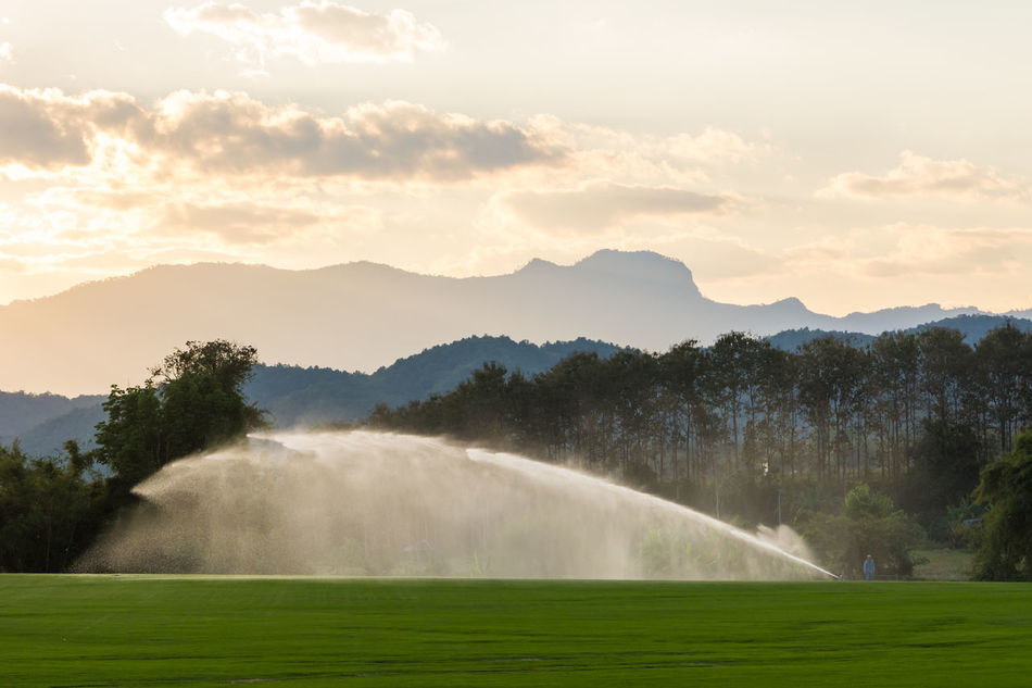 Lawn sprinkler spaying water over green grass. Water Clouds And Sky Grass Green Color Lawn Grass With Flower Mountains Outdoors Over The Roofs Romantic Spraying Water Sprinkler In Grass Sunset Water Bus