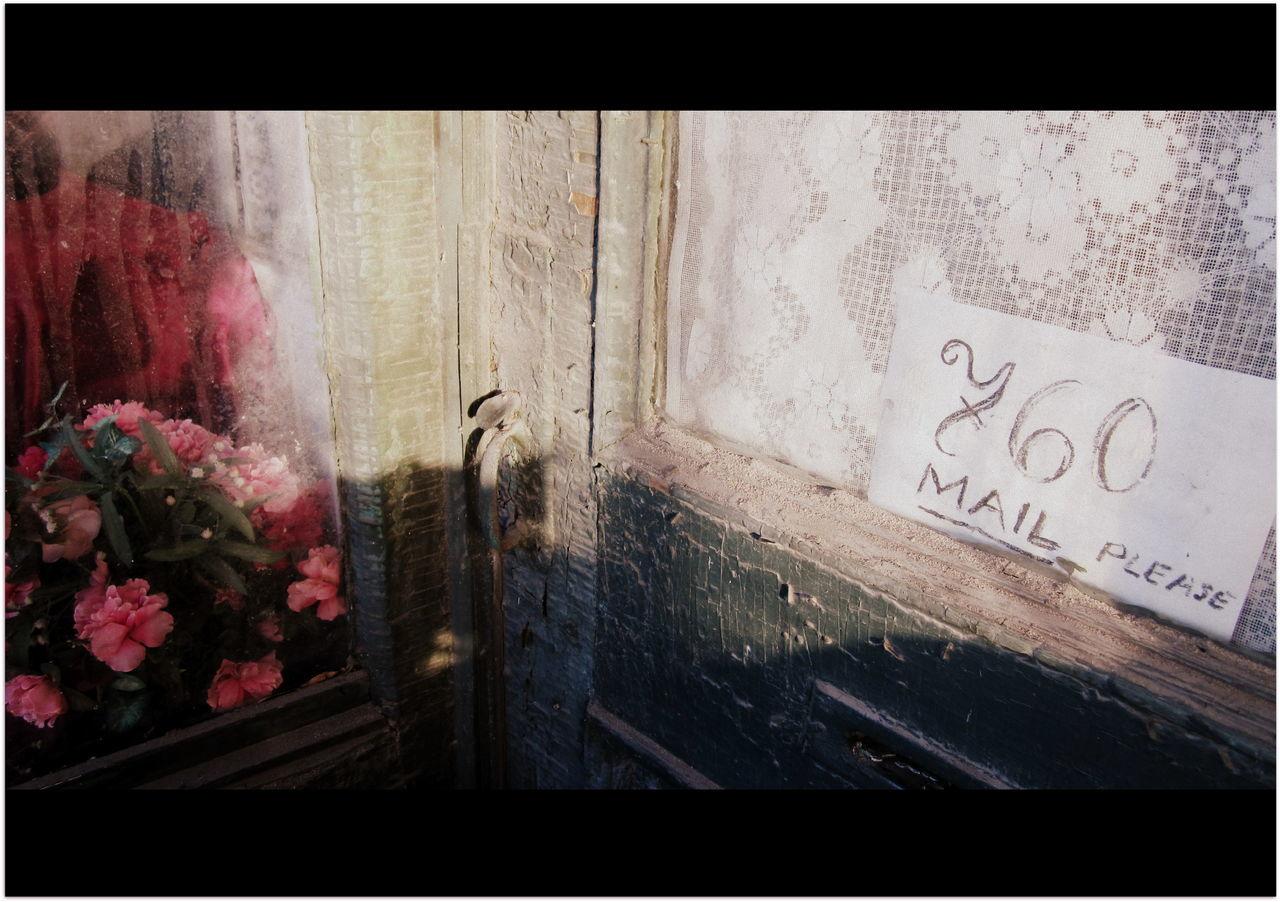 Address In Doorfram Flower Fragility Mail Drop Notic No People Old Lace Curtain Window Window Reflection Window Shadowing Flower