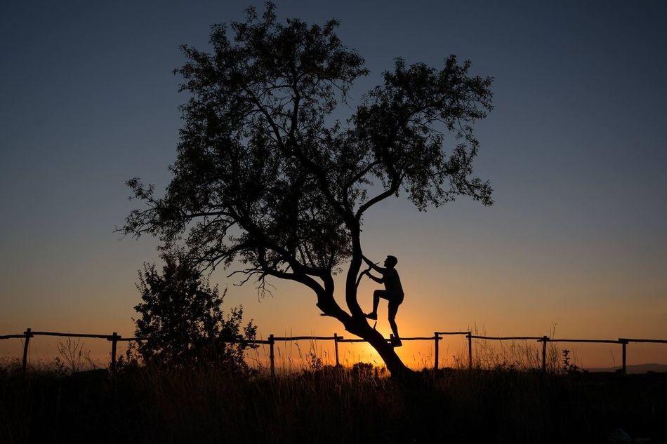 Beautiful stock photos of roma, Aspirations, Bizarre, Climbing, Copy Space