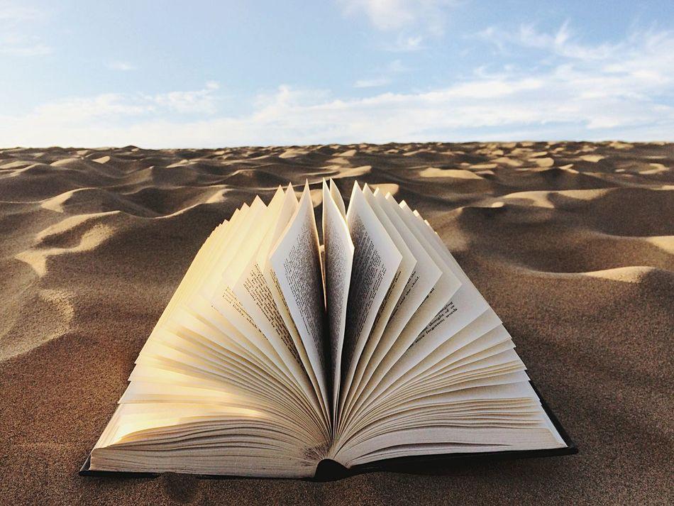 Beautiful stock photos of books, Book, Close-Up, Day, Literature