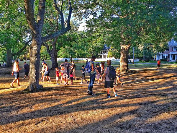 Hidden Gems  Pokémon Go at Acadey Hill.... July Summertime Summer Outdoors Outside Nature People People Watching Strangers Friends Grass Academy Hill Stratford Connecticut New England  USA Walking Walking Around Monument Memorial Tree
