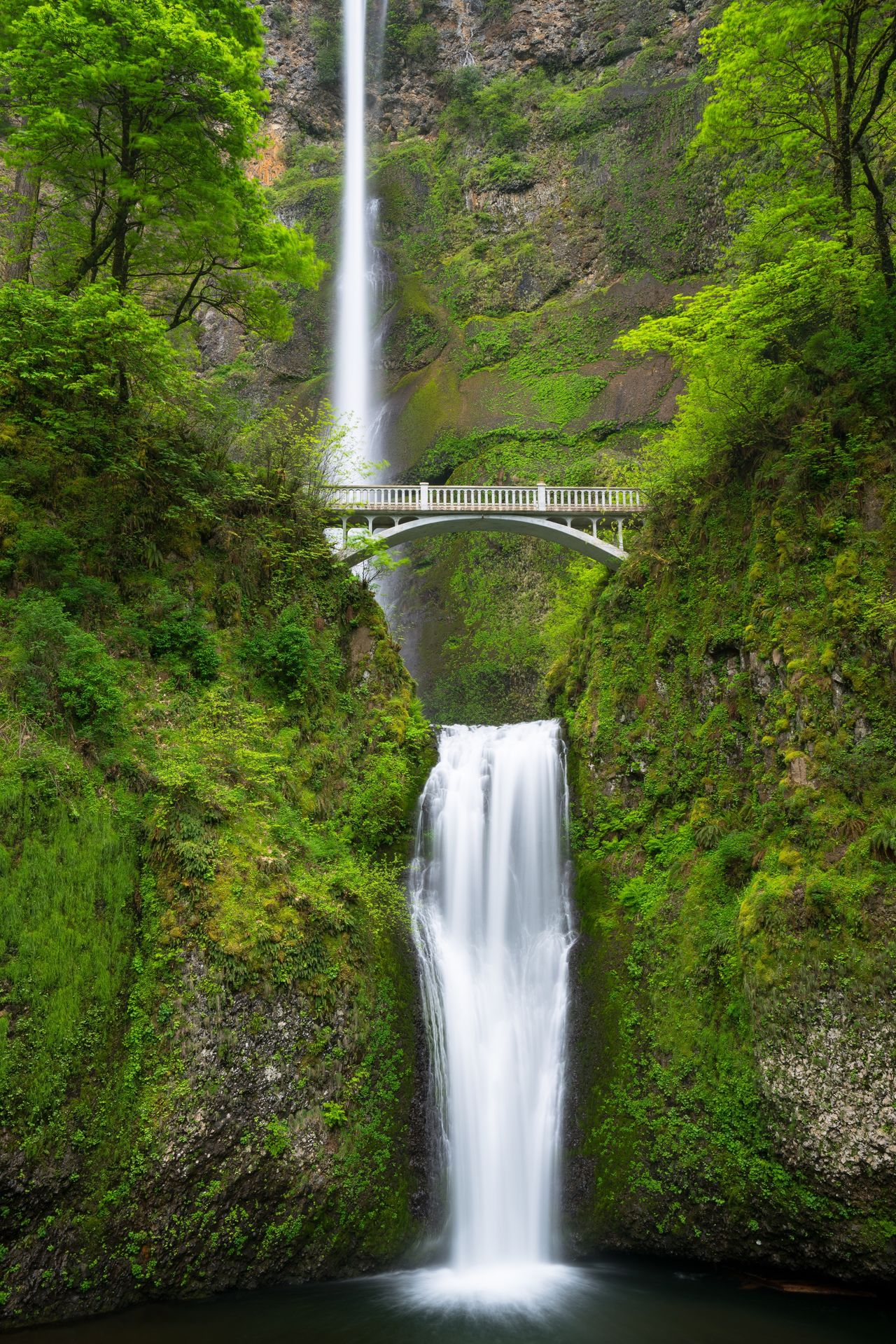 Multnomah falls, Oregon. Multnomah Falls  Waterfall Waterfall_collection Water Oregon PNW Columbia River Gorge