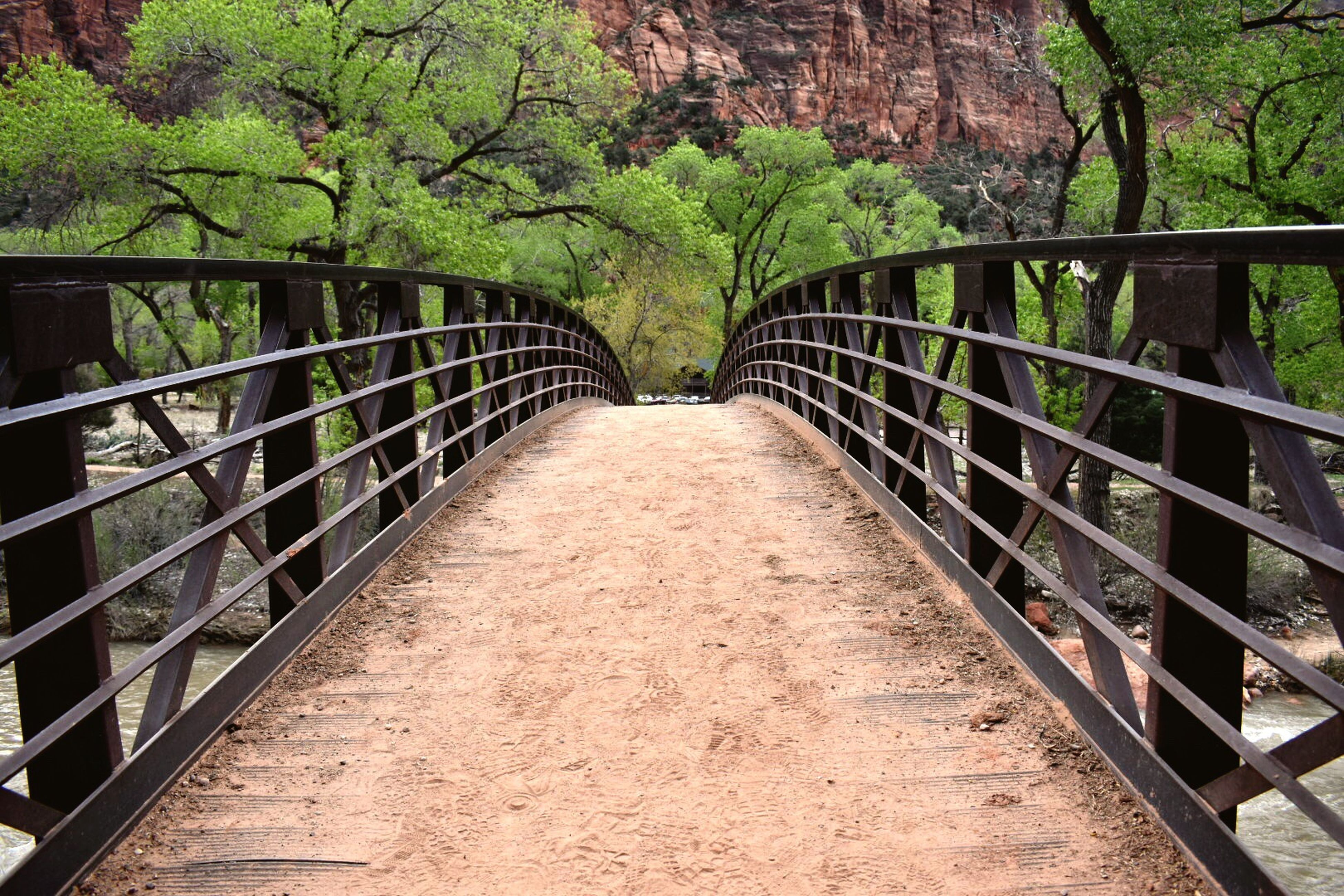 railing, outdoors, day, green color, no people, nature, bridge - man made structure, beauty in nature