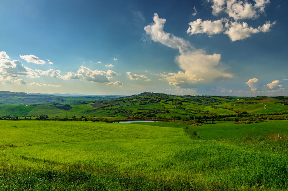 Landscape of the Natural Area of Val d'Orcia Clouds Countryside Field Green Landscape Nature Peace Peaceful View Sky Spring Tourism Tourism Destination Travel Travel Destinations Tuscany Tuscany Countryside Val D'orcia Wheat Field