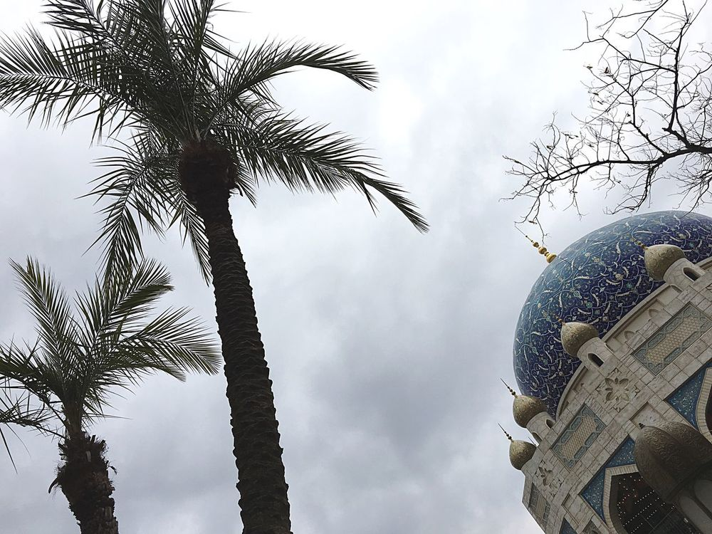 Japanese  Disney DisneySea Arabian Arabiancoast