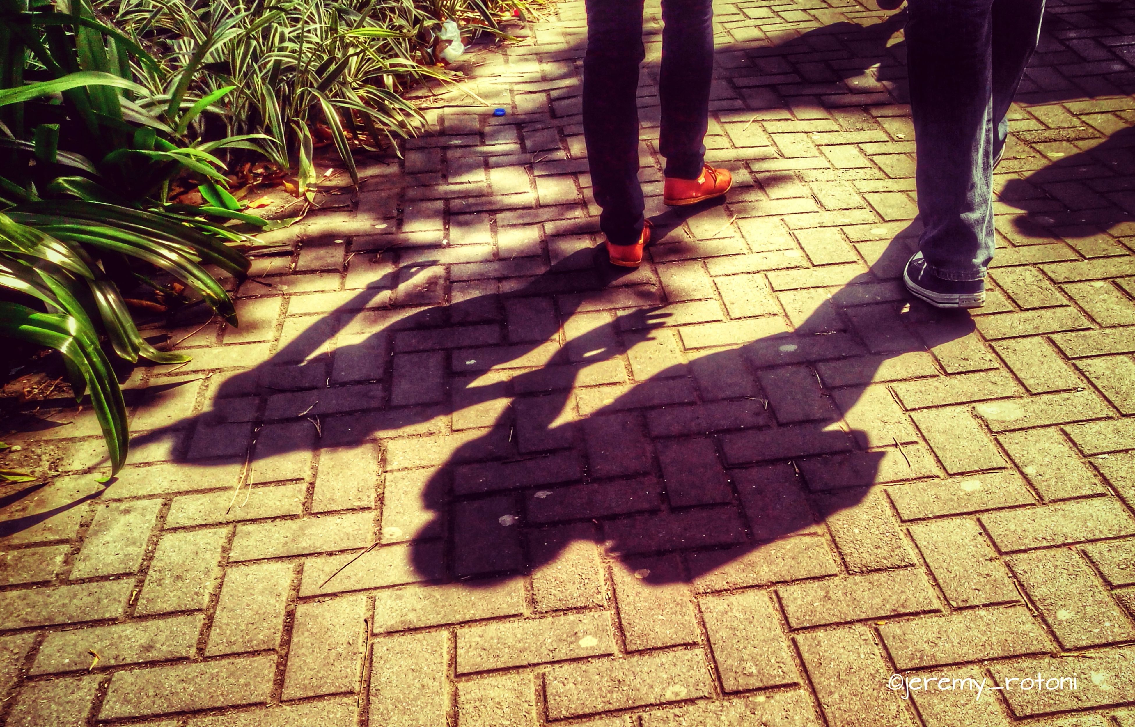 shadow, high angle view, sunlight, focus on shadow, paving stone, footpath, leaf, street, cobblestone, sidewalk, low section, outdoors, day, shoe, autumn, park - man made space, pavement, standing